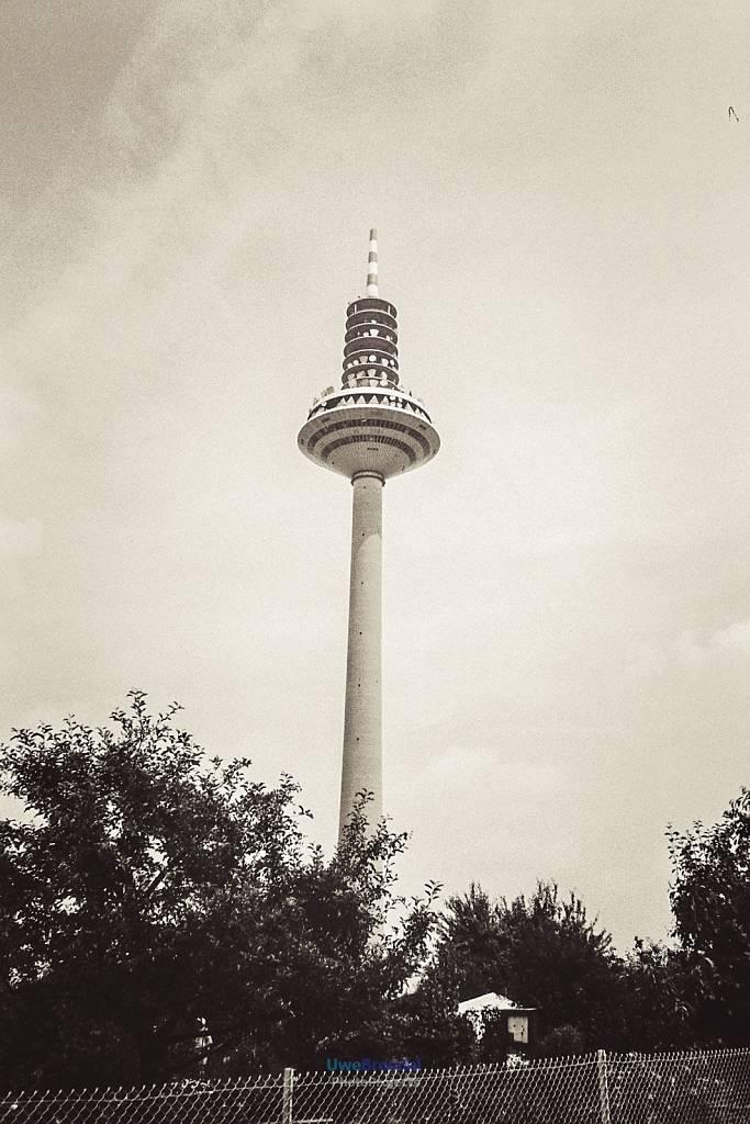 - Frankfurt
